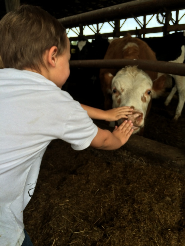 When a child gets the opportunity to  know WHERE their food comes from they get to know from whom.