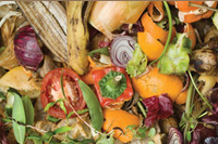 Food waste is not only a travesty of society that dogs farmers and their efforts to feed their neighbours it is also a burden on landfills but through technology and innovation it a part of the sustainability equation for farmers.